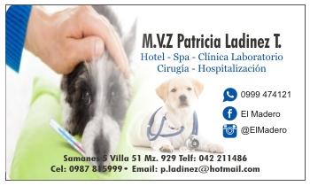 Tarjetas de presentacion para medico veterinario